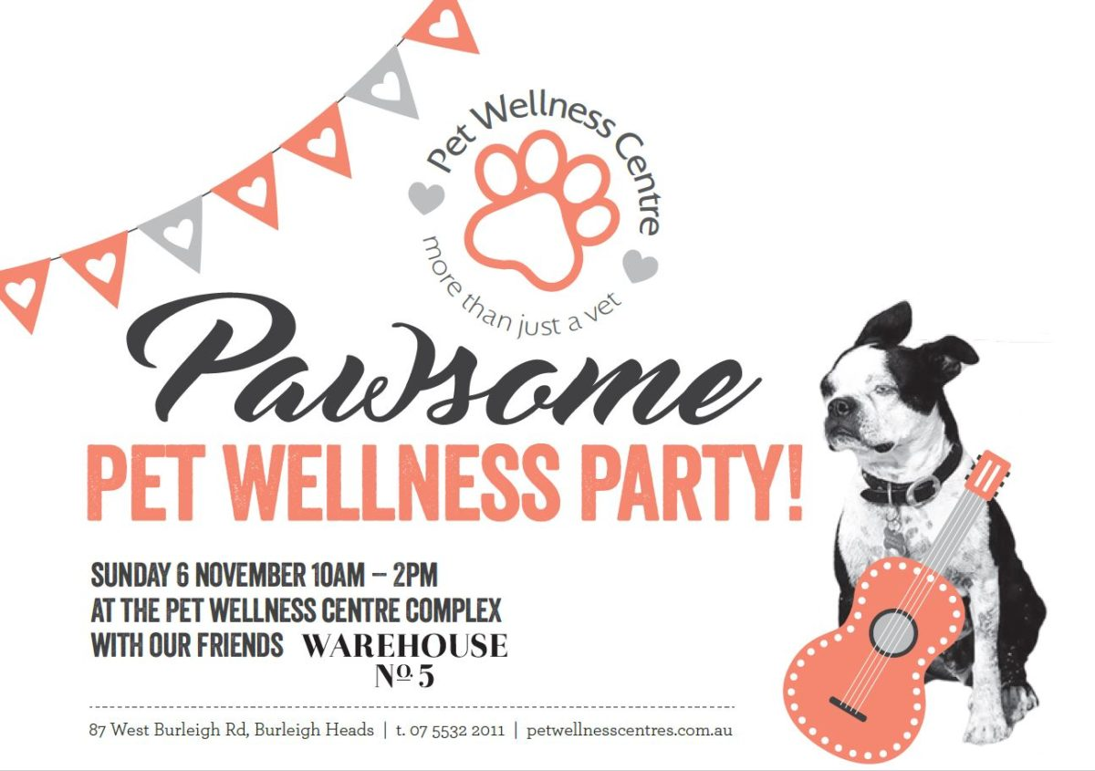 WHAT'S ON – Pawsome Pet Wellness Party!